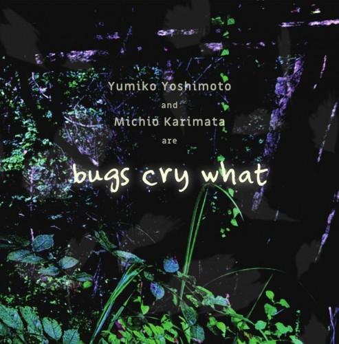 bugs cry what (吉本裕美子 + 狩俣道夫)